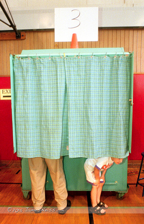 Voting Booth Peeker