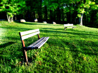 Lonely Park Benches