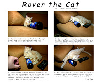 Rover the beer cat.